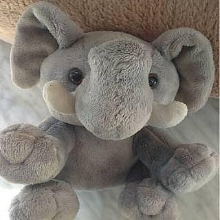 大象动物填充玩具厂家直销毛绒产品可定制-钱眼产品